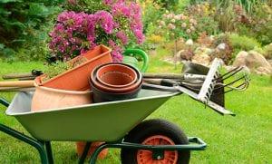 hageredskap og planter