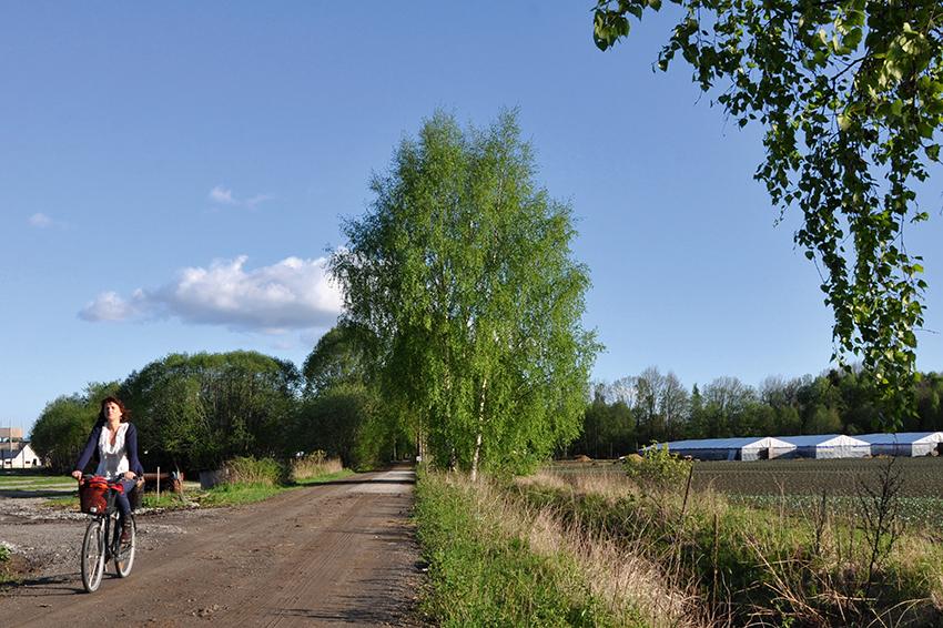 Dame på sykkel, langs Kjellstad